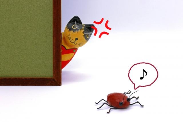 毎年ゴキブリに悩まされるわけ