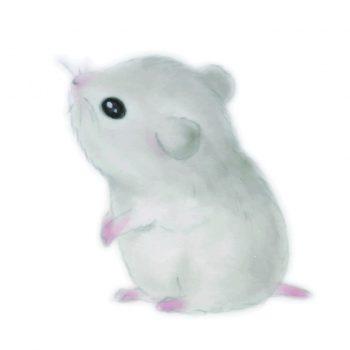 ネズミは害獣なの?